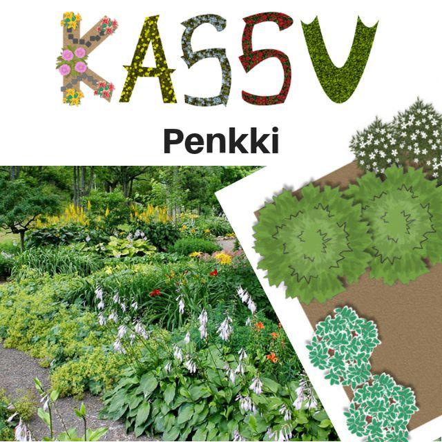 KASSU™ – Penkki