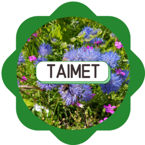 TAIMET